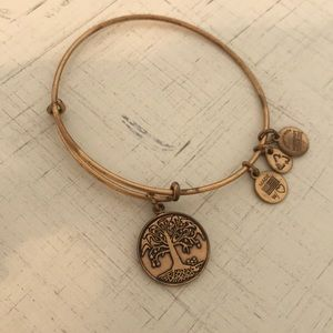 Alex and Ani Energy bracelet